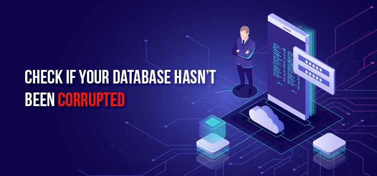 fix Error Establishing a Database Connection wordpress