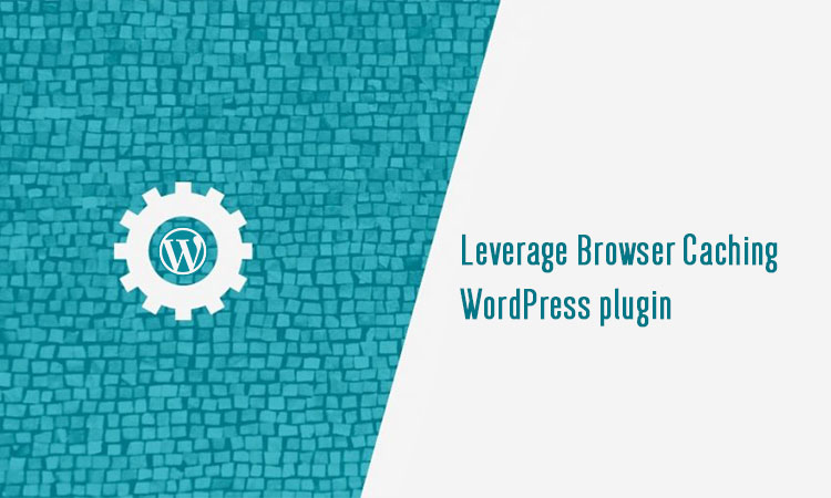 leverage browser caching wordpress w3 total cache